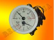 Термоманометр GCO 20-00